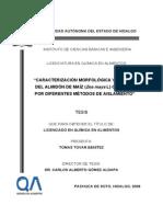 Caracterizacion+morfologica+y+termica+almidon+de+maiz.