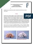 PDF Del Papel