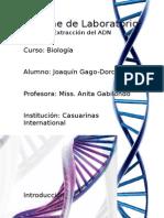 Informe de Laboratorio - Extraccion Del ADN