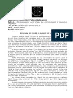 2ª atividade - RESENHA FILME O MUNDO DE SOFIA.doc
