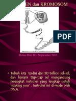 1 - DNA gen dan kromosom_March 2013.pdf