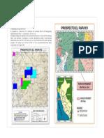 EL PAPAYO.pdf