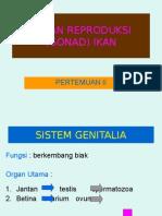 Organ Reproduksi