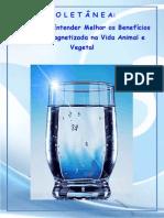 Água Imantda - Coletânea