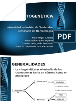 CITOGENETICA DIAPOSITIVAS DEFINITIVAS