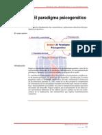 paradigma-psicogenetico