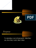 To Introduce You to Honeypots, What They