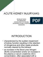 Acute Kidney Injury(Aki)