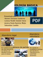 Aduanas Terminologia-basica Basica