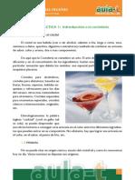 001-Cocteleria-01.pdf