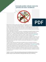 Medidas de Prevenção Podem Reduzir Casos Da Dengue Neste Período de Maior Incidência