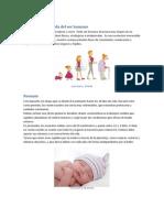 Ejercicio 1 Tics (1)
