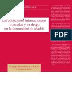 BERASTEGUI Y Le Adozioni Internazionali Interrotte e a Rischio Nella Citta Di Madrid