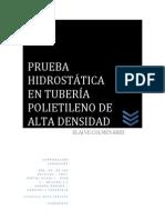 manual de pruebas hidrostatica.pdf