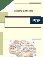 H.sindroame Corticale2012