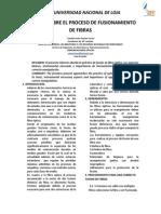 Informe Sobre El Proceso de Fusionamiento de Fibras
