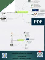 Organizadores Graficos PDF