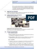 E-Densidad de Campo.docx