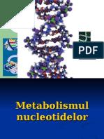 Metabolismul Ac.nucleici_cu Pagini