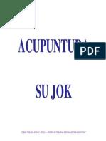 230759778-Meridianos-acupuntura