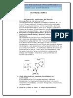 Actividades PAU Los ácidos nucleicos