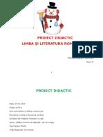 Proiect Didactic - Deficienti mintali