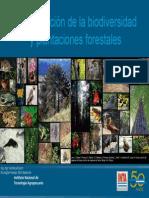 Sesión 4 - Plantaciones Forestales