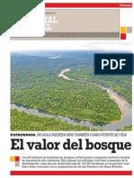 Potencial Forestal