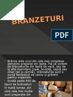 147070628-Bran-Ze-Turi
