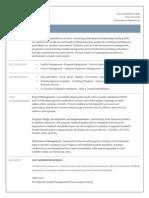 VP Program Process Management In New York City Resume Patricia Damrow