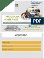 programapostradosrencastilloflores-120524171627-phpapp01.pdf