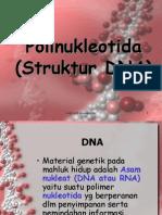 Kul 3 Struktur Dna