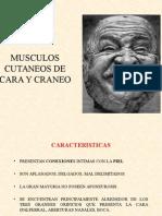 MUSCULOS DE CARA  Y CRANEO  - TESTUT PPT