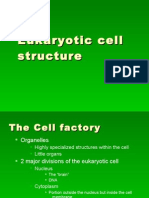 The Cell Factory Ppt