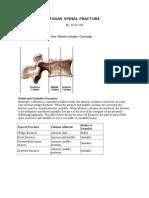 Denis Classification.doc