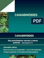 Aula Cannabis 2013