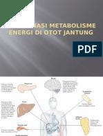 Koordinasi Metabolisme Energi Di Otot Jantung