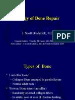 Biology of Bone Repair