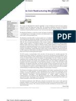 CDR Monitoring Mechanism