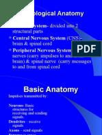WEB Neuro