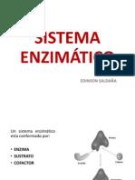 Sistema Enzimático