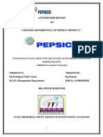 pepsico summer training report (1).doc
