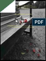 O PROCESSO DO LUTO.pdf