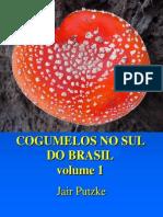 Cogumelos no Sul do Brasil - volume 1