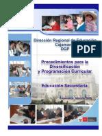 Diversificacion y Programacion Secundaria 2009[1]