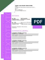 Curriculum Nuevo Formato 2015