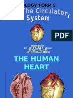 Sub 1.2 - Circulatory System_2009c