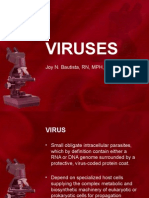 DNA RNA Viruses