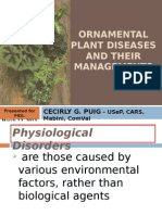 Ornamental Plant Diseases and Their Managements