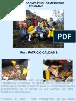 campamentoeducativo-tecnicadefogatas-110410221644-phpapp01.pptx